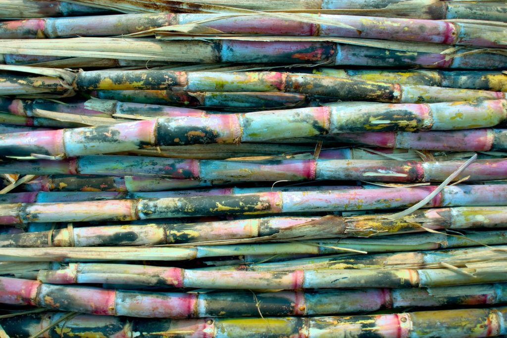 Colourful sugarcane sticks stacked up.